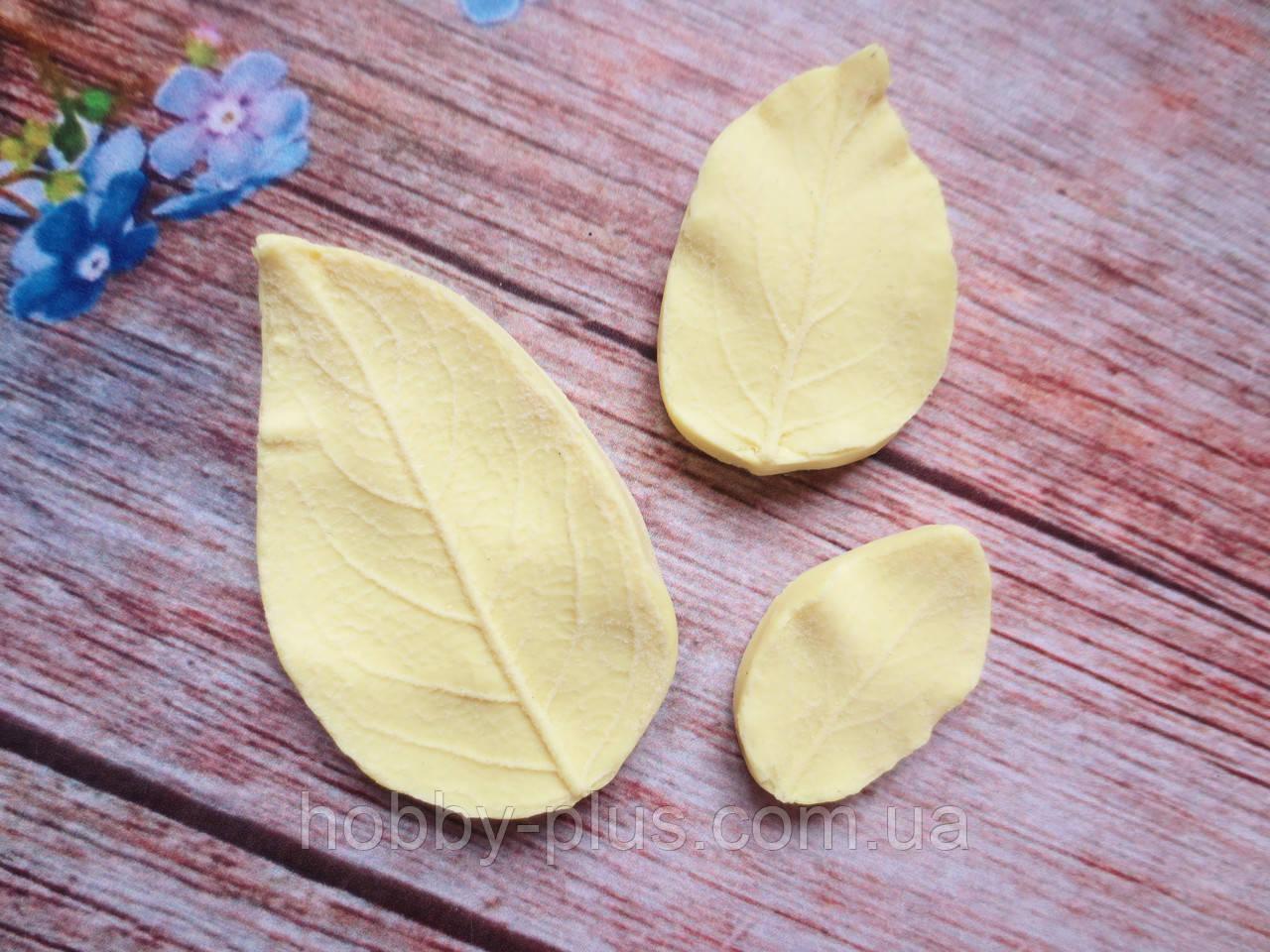 """Набор молдов """"Листья яблони"""" (р-р 5х3, 3,5х2,5, 2,8х1,5 см), 3 шт."""