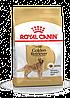 Royal Canin Golden Retriever Adult - корм для собак породы голден ретривер с 15 месяцев 12 кг