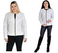 Куртки женские весна осень модные размеры 42-62