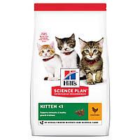 Hills Science Plan Kitten корм для котят с курицей 7кг
