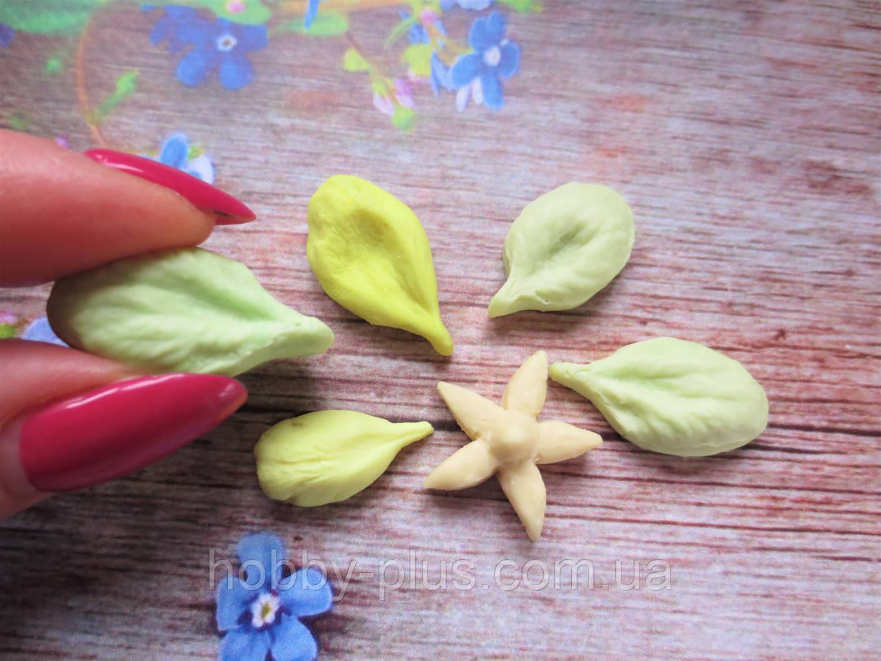 "Набор молдов ""Лепестки яблони и чашелистик"" (р-р от 2,3 до 2,8 см), 6 шт."