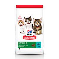 Hills Science Plan Kitten корм для котят со вкусом тунца 1,5 кг