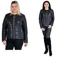 Весенние женские куртки новинка фото размеры 42-62