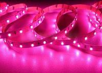 Кольорова світлодіодна стрічка РОЖЕВИЙ SMD2835 Pink 60led/m, 5W*1m, 12Vdc, Кратність різання 5 див.