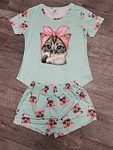Молодежная пижама кошка  04-1