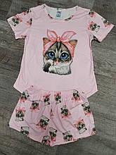 Молодежная пижама кошка 04-3