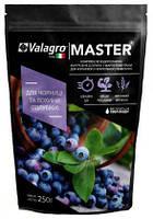 Удобрение Master для черники и голуюики (250г) Valagro