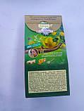 Чай ловаре Имбирный ранок 20 пирамид, фото 2