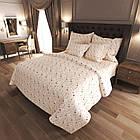 Комплект постельного белья Звездочка Евро 11589