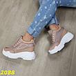 Женские сникерсы кроссовки на платформе, беж, р.37-41, фото 3