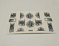 Слайдер дизайн цветы 5836