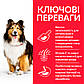 Сухой корм Hill's Science Plan Sensitive Stomach & Skin для взрослых собак средних пород с курицей - 14 кг, фото 3