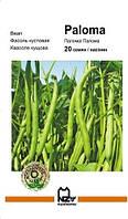 Семена фасоль кустовая Палома , Paloma,  Nunhems