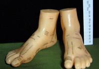 Макет ног