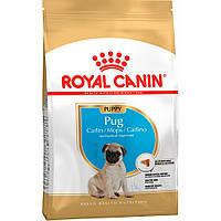 Корм Royal Canin Pug Puppy, для щенков породы Мопс до 10 месяцев, 1,5кг