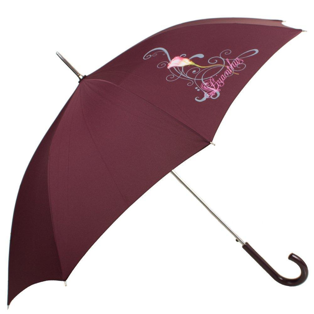 Зонт-трость женский полуавтомат AIRTON (АЭРТОН) Z1621-12
