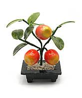 Яблоня (3 яблока)(14х8,5х6 см)(A2388)