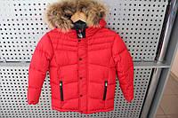 Куртка детская мальчик Snowimage SICBMY-V803/Красный