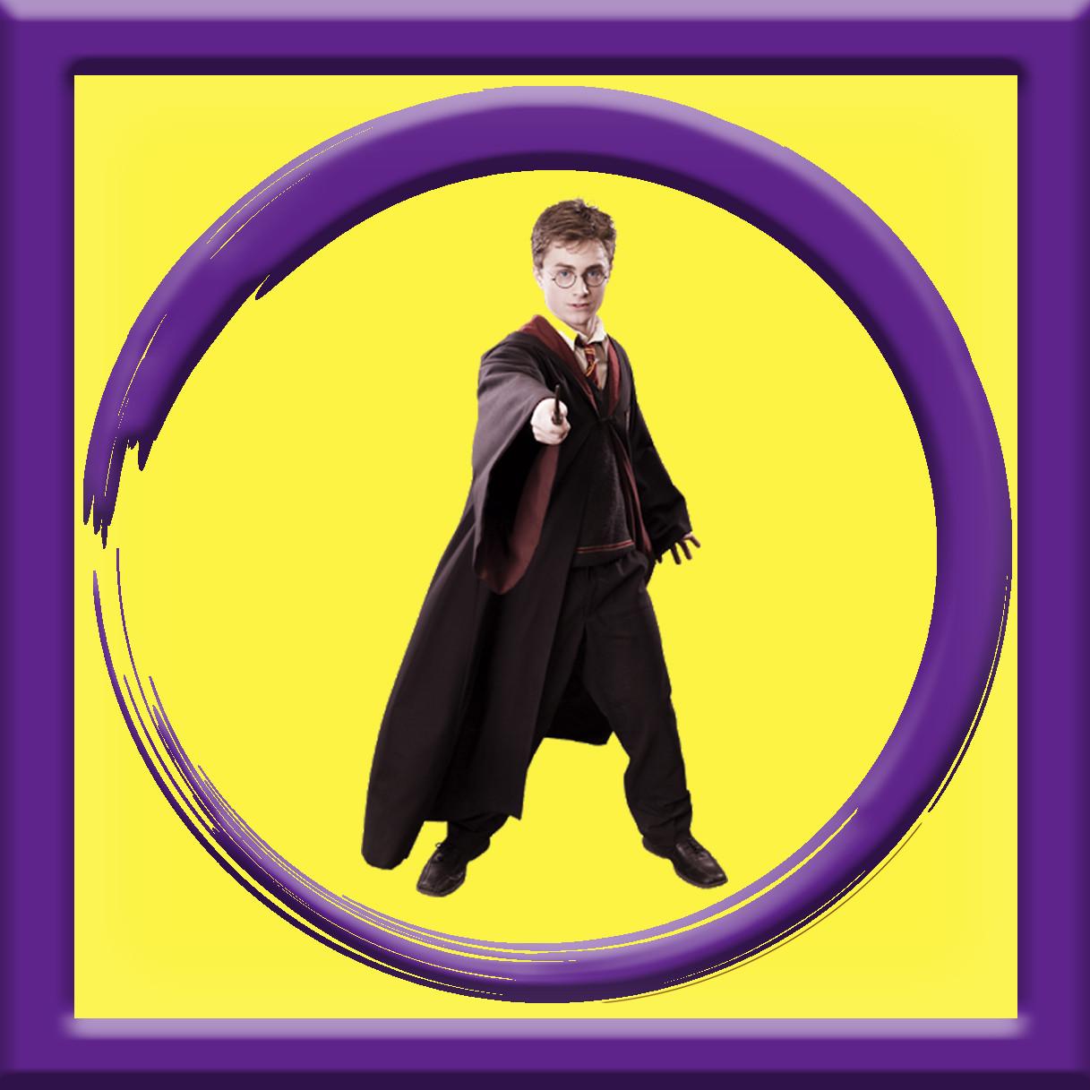 Аниматор Гарри Поттер на детский день рождения День ...