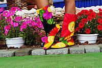Полусапожки женские цветные.  Арт-0256, фото 1