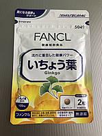 Гинкго. Fancl Ginkgo