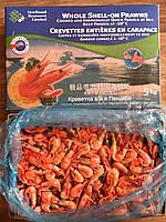 Креветки атлантические в панцире варено-мороженые 125/155, Канада