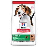 HILL'S SCIENCE PLAN Medium Puppy 14кг - корм для щенков малых и средних пород с ягненком (604353)