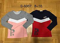 Реглан трикотажный  для девочек ,F&D , 8-16 лет оптом S-6067