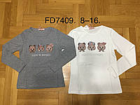 Реглан трикотажный  для девочек ,F&D , 8-16 лет оптом FD7409