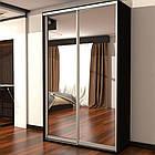 Шкаф купе 02 1500х450х2400 Алекса мебель, фото 2