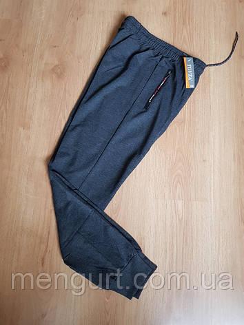 Штаны спортивные мужские тонкие товта tovta, фото 2