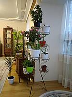 Башня-8, подставка для тяжелых цветов на 12 чаш, фото 1