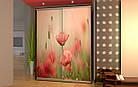 Шкаф купе 02 1700х450х2400 Алекса мебель, фото 2
