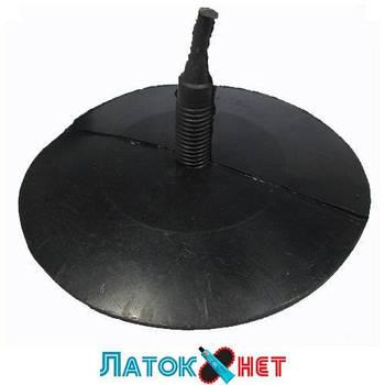 Гриб гигант ножка 15 мм шляпка 175 мм Украина