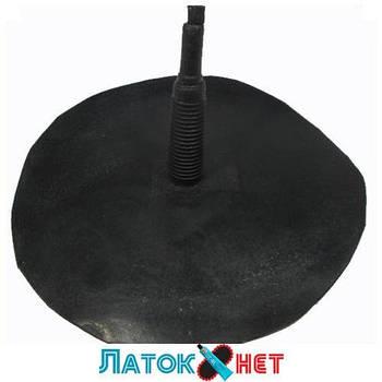 Гриб гигант с кордом ножка 15 мм шляпка 175 мм Украина