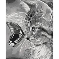 Картини за номерами - Кошеня і метелик (КНО2499)