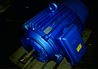 Электродвигатель асинхронный 4АМ200М6У3
