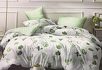 Комплект постельного белья двуспальное евро 200*220 простынь на резинке (13821) бязь Ранфорс