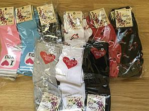 Шкарпетки жіночі 36-40 кольорові Український трикотаж (стрейч), фото 2