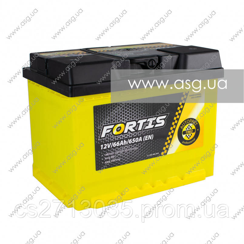 Автомобильный аккумулятор FORTIS 66 Ач 650 А (0) R+