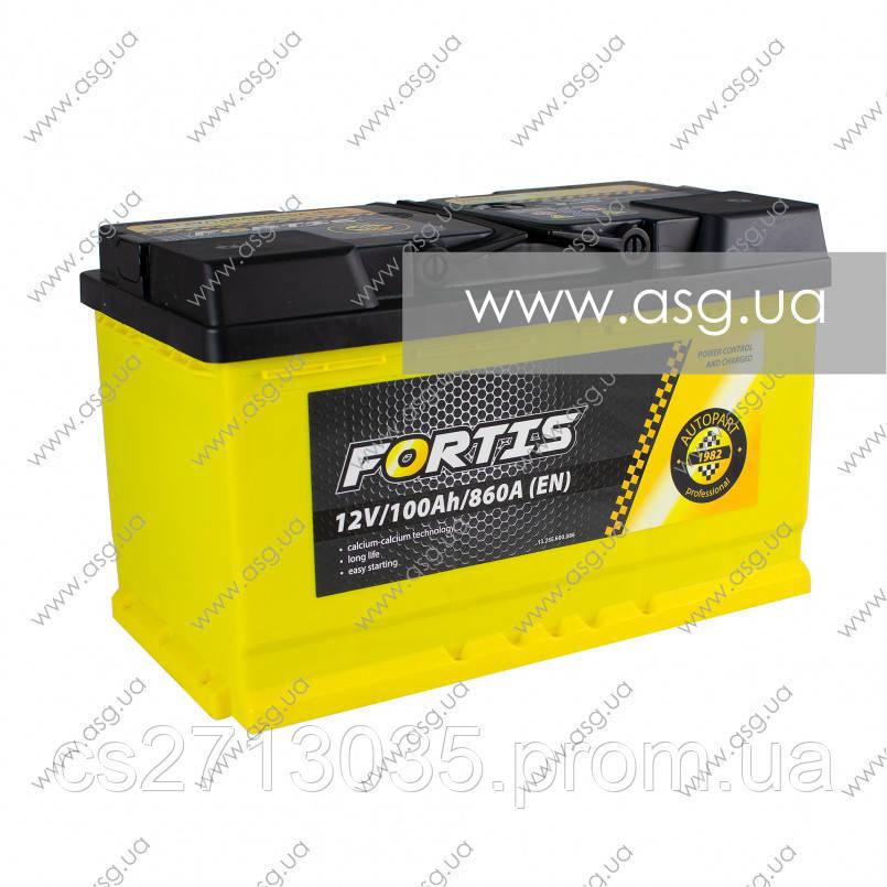 Автомобильный аккумулятор FORTIS 100 Ач 860 А (0) R+ 315мм