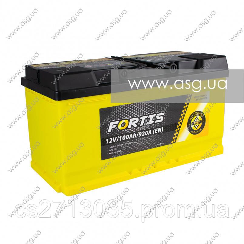Автомобильный аккумулятор FORTIS 100 Ач 920 А (0) R+