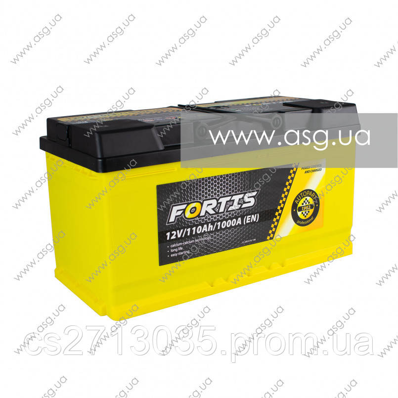 Автомобильный аккумулятор FORTIS 110 Ач 1000 А (0) R+