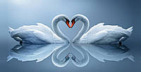 Картина лебединое сердце