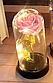 Вечная роза. Роза в колбе с LED подсветкой, ночник МАЛЕНЬКАЯ РОЗОВАЯ №A54, фото 3