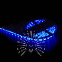 Светодиодная лента LED подсветка 12V 5W 60SMD/m 360LM / LM589