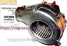 Вентилятор FIME60Вт +тр.Пито (б.ф.у, EU) Viessmann WH0A, WН1B, WH1D, 24 кВт, арт. 7829879A, к.з. 1002