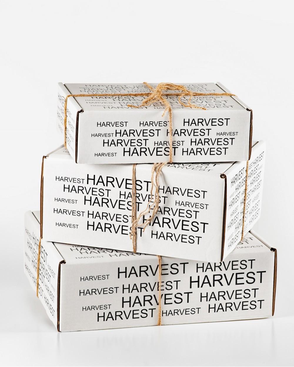 Подарочная упаковка (MEDIUM), белая, с принтом Harvest