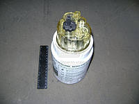 Элемент фильтра топливного (сепаратора) КАМАЗ ЕВРО-2, DAF ( BIG), GB-6118