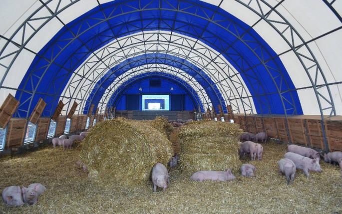 Тентовые конструкции под сельскохозяйственные помещения, фото 2
